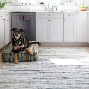 Denim Rag Woven Rug by Dash and Albert