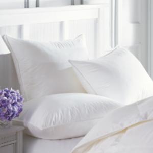 Sierra Down Free Comforter / Duvet Insert