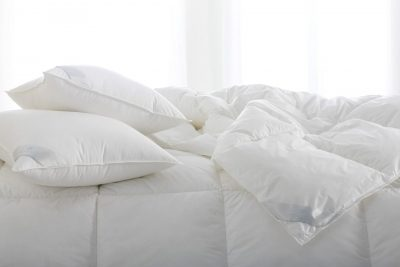 Bergen Down Alternative Comforters/Duvet Inserts by Scandia Down