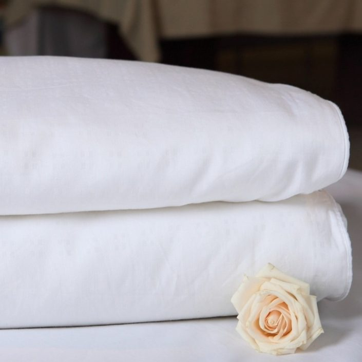 Silk Filled Duvet With Cotton Cover by Silk Story